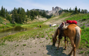 Slow down and take a Wyoming Pack Trip